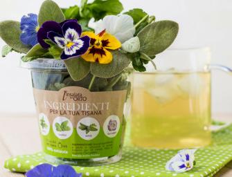 Tisane dell'Orto: erbe aromatiche fresche e fiori per il drink dell'estate