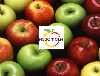 Assomela ad Asia Fruit Logistica con FROM, VOG, VI.P Val Venosta, Melinda e La Trentina