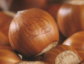 Nocciola di Giffoni Igp: caratteristiche, produzione, mercati. Il punto a Napoli