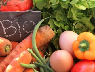 """Studio: mangiare biologico riduce del 25% il rischio di cancro. Caprotti: """"Cose indicibili 20 anni fa"""""""