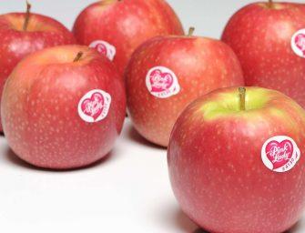 Pink Lady, premesse positive per la nuova campagna. 195 mila tonnellate previste in Europa