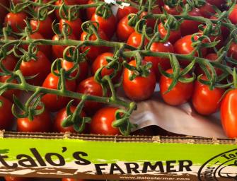 Italo's Farmer, un brand premium per gli ortaggi siciliani. Vola il fatturato