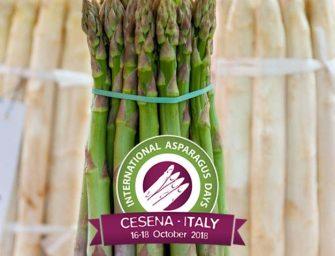 """International Asparagus Days, Piraccini: """"Scommettiamo sull'iperspecializzazione"""""""