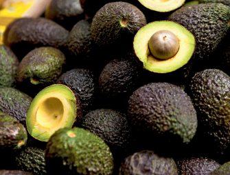 Battaglio e Tropical entrano insieme nella produzione dell'avocado. Nasce Agricola Persea