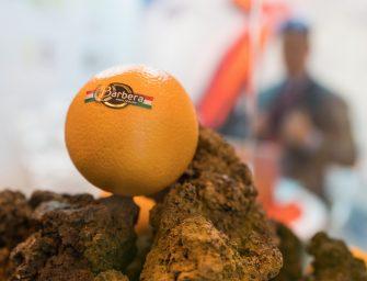 Barbera a Fruit Attraction mette in vetrina la biodiversità siciliana