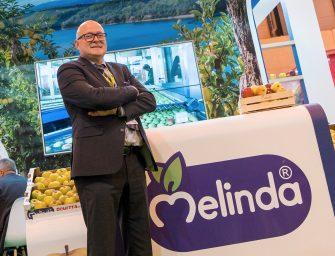 """Melinda, Mittermair nuovo coordinatore export: """"Puntiamo a quota 35%"""""""