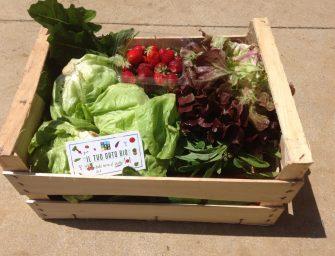 Sbarca a Roma Youfarmer, il co-farming che rivoluziona la filiera del cibo fresco