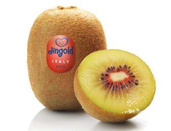 Il kiwi a polpa rossa di Jingold arriva sul mercato. Debutto sui banchi di CIA-Conad