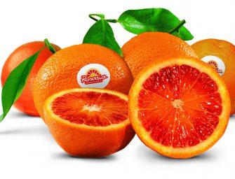 """Rosaria, torna sui banchi l'arancia rossa. Pannitteri: """"Investimenti in ettari, tecnologie e magazzino"""""""