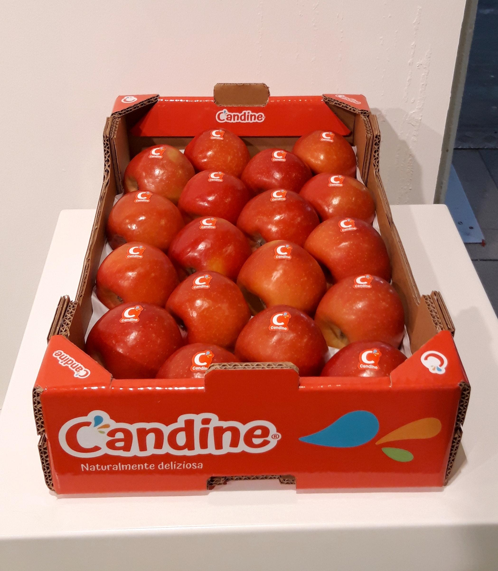 Candine Apofruit SFT