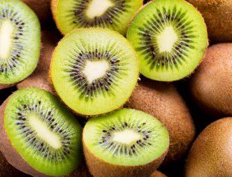 """Kiwi verde, in deficit la produzione italiana. Macchi, CSO Italy: """"Volumi inferiori alle stime, ma la qualità è buona"""""""