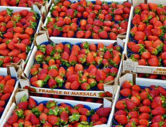 Il caso delle fragole marocchine spacciate per siciliane. Ma quanto vale il falso made in Italy?