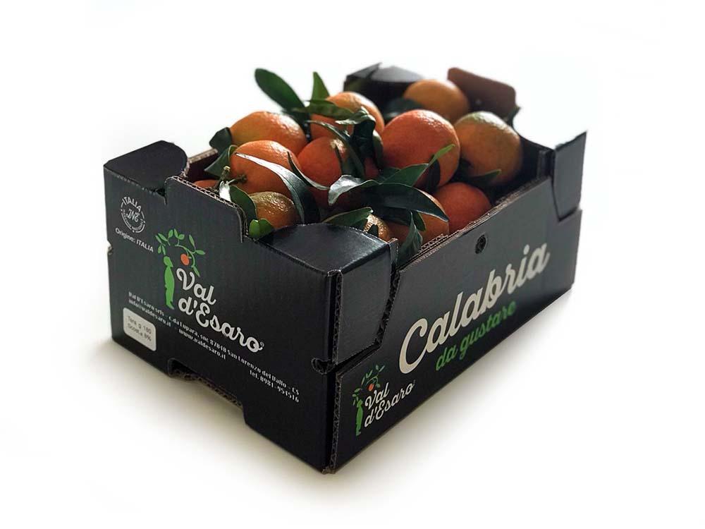 clementine-val-esaro-pack