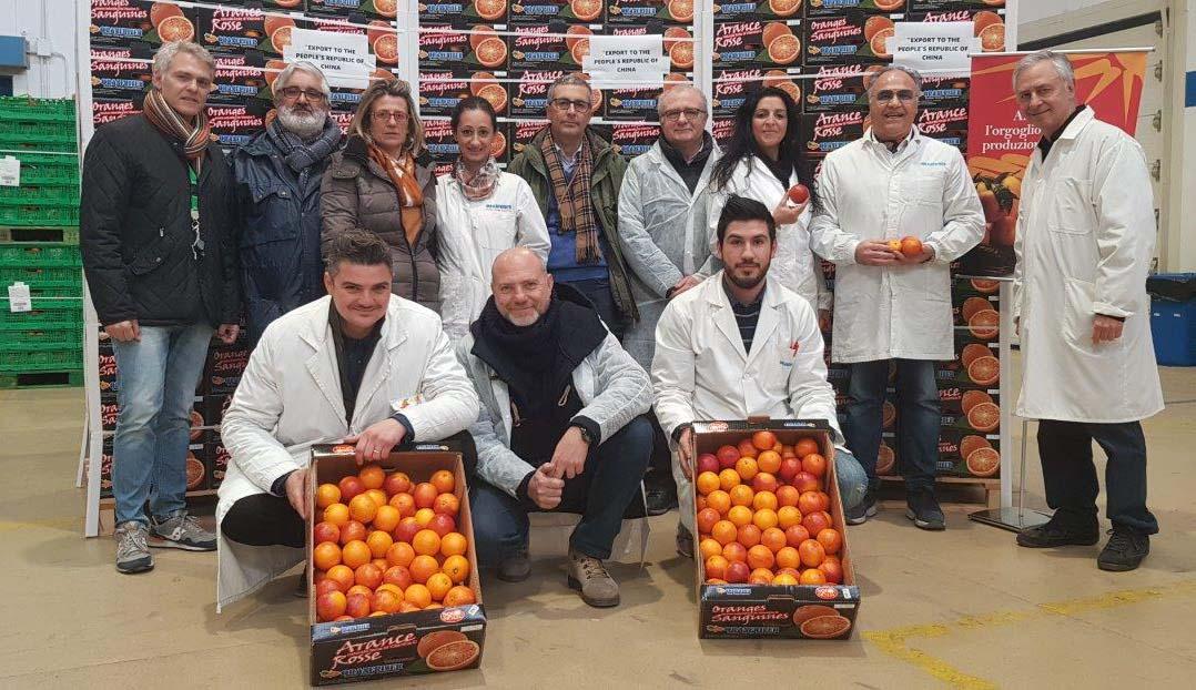 Oranfrizer agrumi Cina