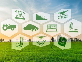 Innovazione, boom dell'agrifood digitale: oggi vale 400 milioni