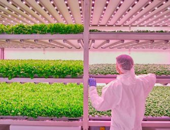 Planet Farms: a Milano il più evoluto laboratorio in Europa sul vertical farming