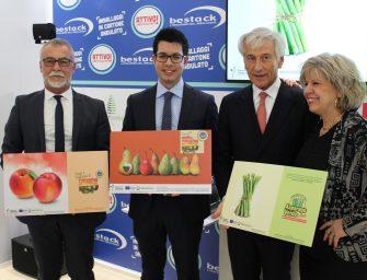 Asparago, pesca e nettarina, pera: CSO Italy promuove le Igp dell'Emilia Romagna anche in Europa