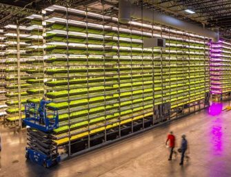 "Vertical farming, la coltivazione ""indoor"" di AeroFarms conquista Singapore Airlines"