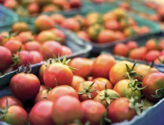 Pratiche sleali nella filiera agricola: l'Ue approva nuove norme a tutela dei produttori