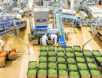 La spagnola GAC acquisisce Florette Italiae si impone sul mercato delle insalate di IV gamma