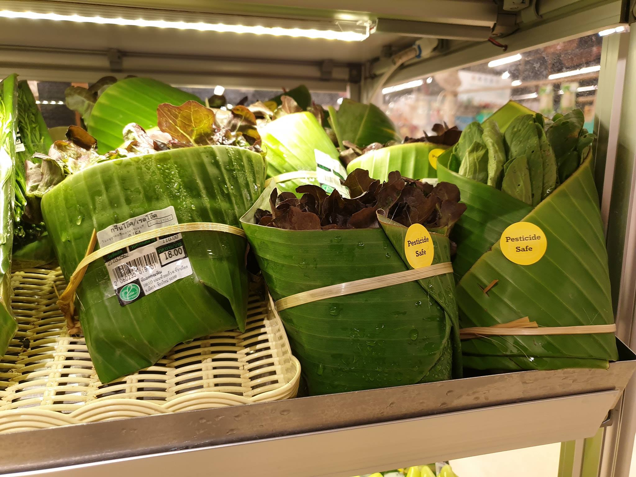 foglie banano packaging plastica