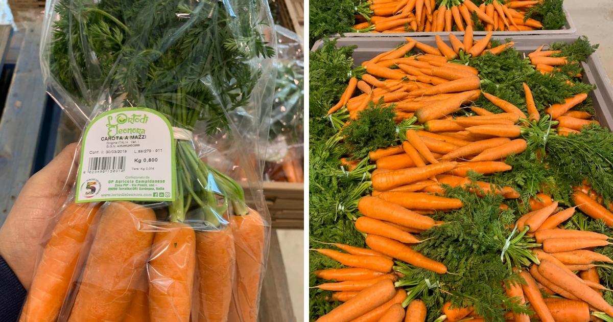carota Agricola Campidanese