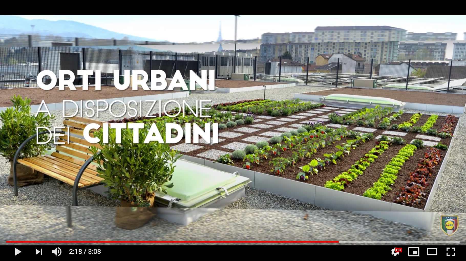 Lidl-Torino-via-Bologna-orti-urbani-dettaglio