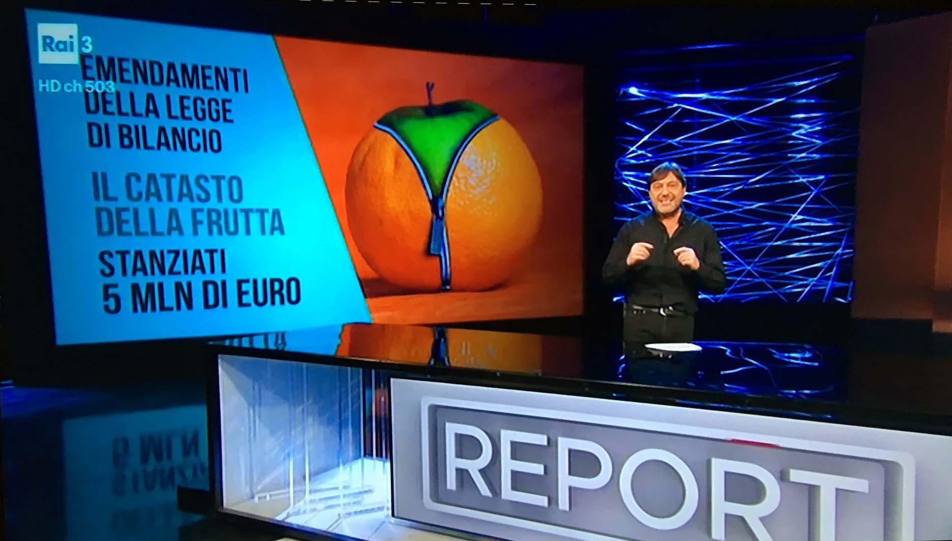 Report Catasto Frutta