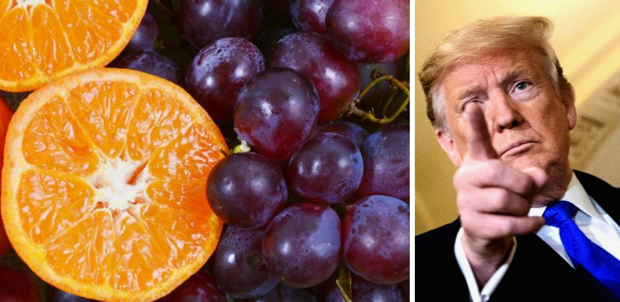 Trump arance uva