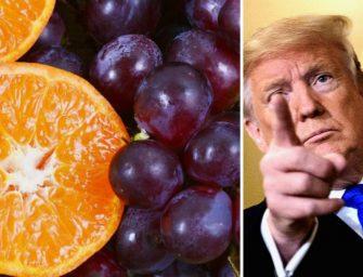 Dazi Usa sui prodotti UE: la scure di Trump anche su arance e uva made in Italy
