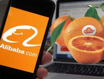 Le arance Rosaria tornano in Cina: successo le vendite online su Alibaba