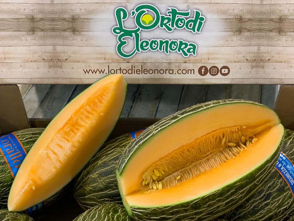 Orto di Eleonora melone Corallo