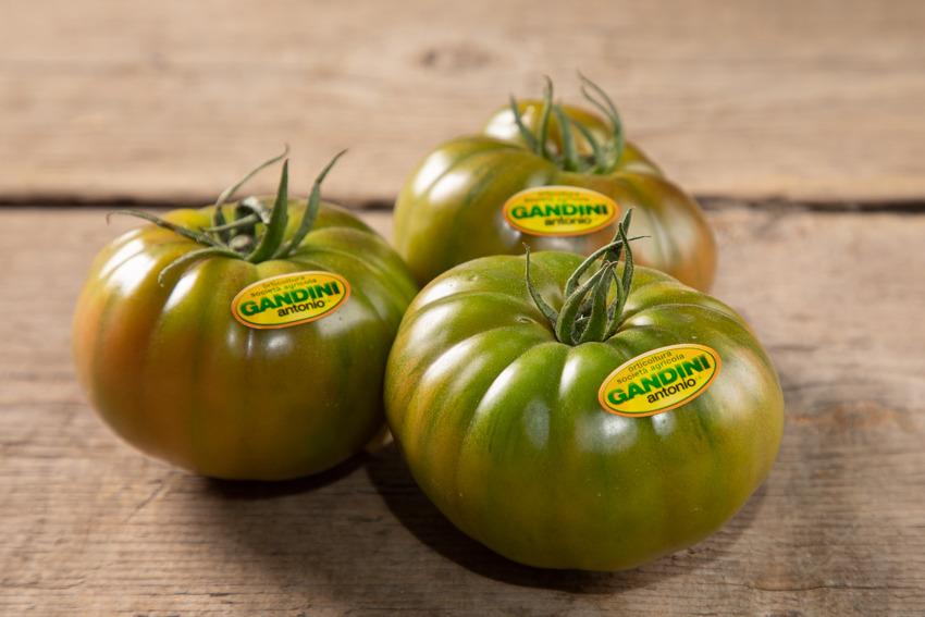 Gandini-pomodoro-costoluto