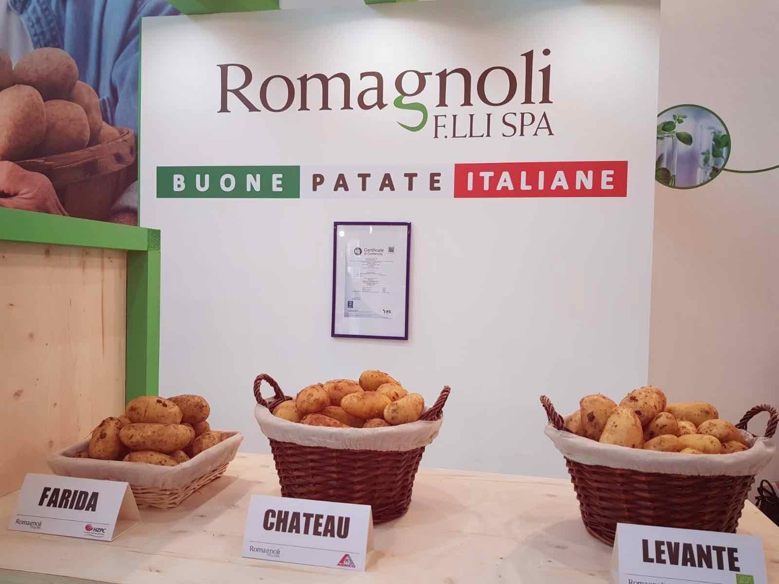 Romagnoli F.lli Spa