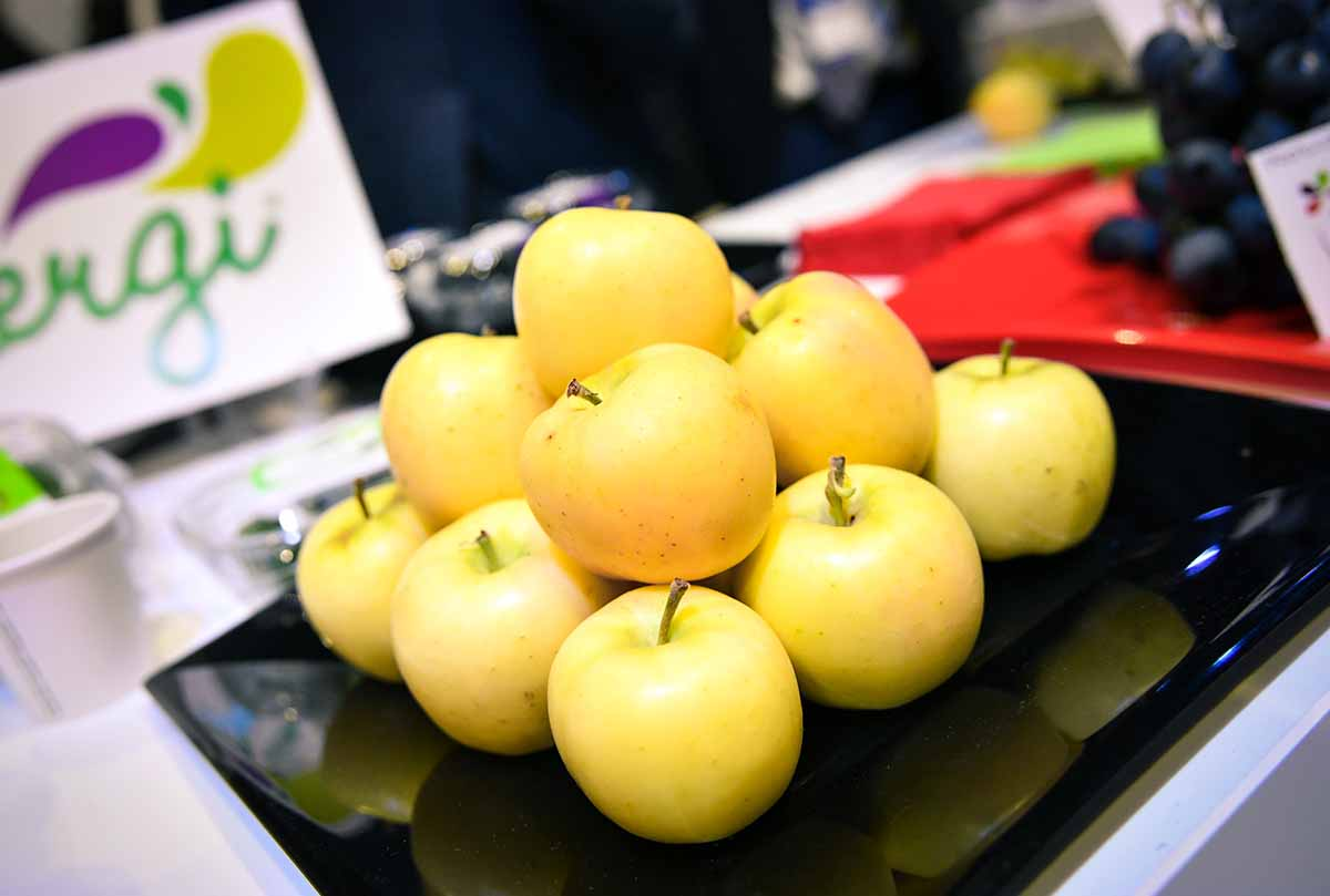 mele snack_ Rk Growers_Fresh Retailer 2019_Fm